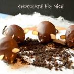 Chocolate Fig Mice