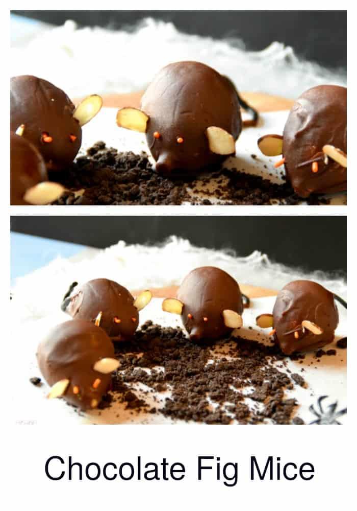 chocolate-fig-mice-14