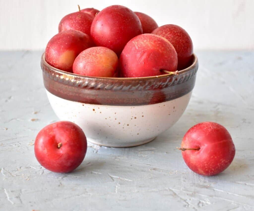 "<img src=""https://cdn.shortpixel.ai/client/q_glossy,ret_img,w_720,h_597/cherryplum.jpg"" alt=""Cherry-plum.jpg"">"